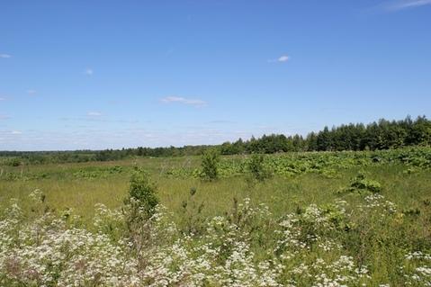 Земельный участок 10 Га в д. Рождествено, 35 км от МКАД - Фото 3