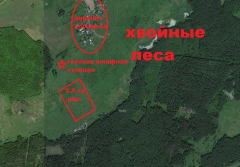3.5 га земли ИЖС (рядом с деревней) продаю или меняю на квартиру - Фото 2