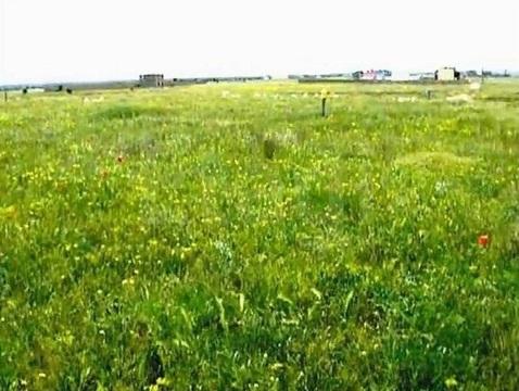 Земельный участок 10 соток в Крыму - Фото 2