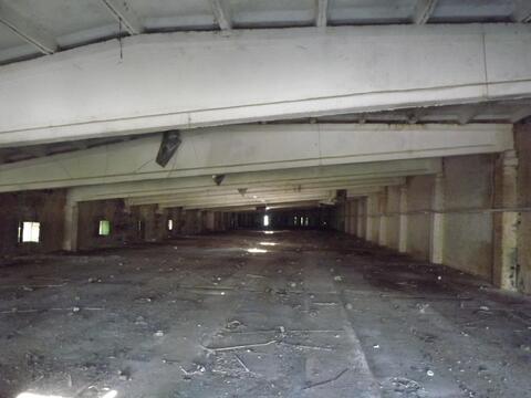Площадь под производство или склад - Фото 3