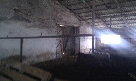 Продажа фермы в Корочанском р-не - Фото 1