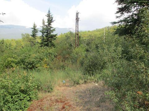 Продам участок в Ялте,8 соток возле трассы, с шикарным видом на горы - Фото 3
