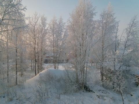 Павловск СНТ Звёздочка - Фото 4