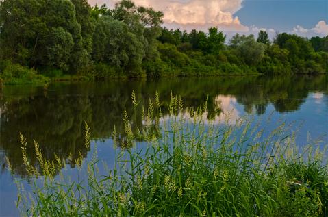 Квартира в Москве с видом на речку! - Фото 3