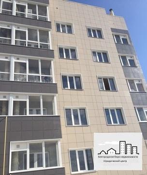 Продажа однокомнатной квартиры в п. Новосадовый в новом доме - Фото 3