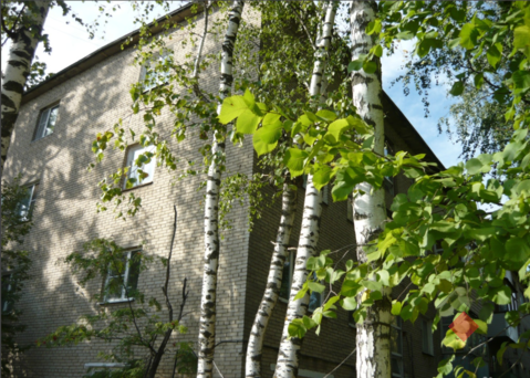 Продам 1-к квартиру, Летний Отдых, Зеленая улица 3 - Фото 3