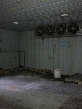 Сдам складское помещение в г. Челябинск. Салтыкова,18. - Фото 3