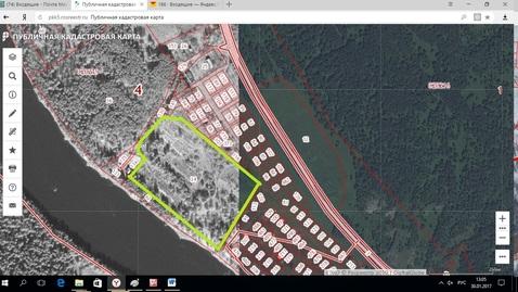Продается участок на берегу Катуни - Фото 4