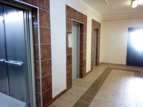 Видовая двухкомнатная квартира в Приморском районе - Фото 4
