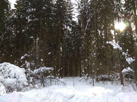 Ильинское ш. 17км. д. Бузланово участок 15 соток ИЖС - Фото 3