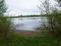 Участок 4 Га, Псковская обл, д. Горка - Фото 3
