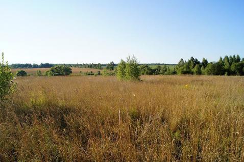Продается участок 50 соток в Калужской области д.Букрино - Фото 2