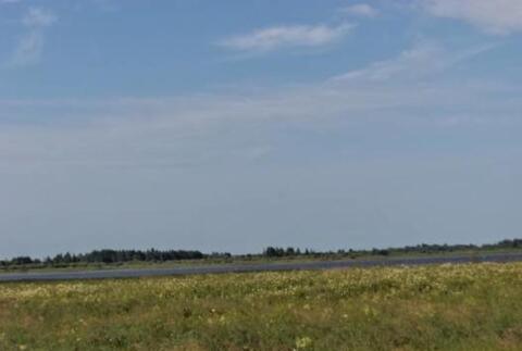 Земельный участок. Шимский район, д. Усполонь - Фото 4