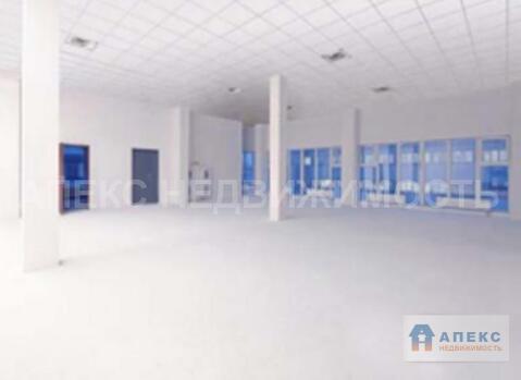 Продажа офиса пл. 6520 м2 м. Шоссе Энтузиастов в бизнес-центре класса . - Фото 4