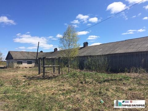 Животноводческая ферма в Семеновском районе - Фото 2