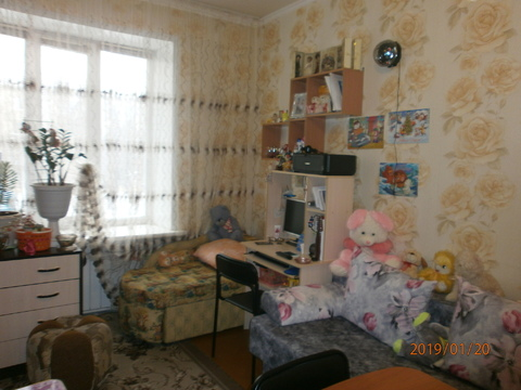 1-к квартира, ул. 40 лет Октября, 33 - Фото 1