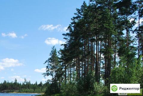 Аренда дома посуточно, Санхар, Вязниковский район - Фото 2