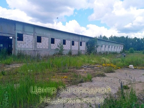 Складские помещения, Дмитровское ш, 63 км от МКАД, Дмитров, класс вне . - Фото 3