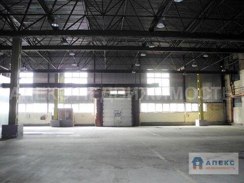 Продажа помещения пл. 28500 м2 под склад, офис и склад м. Кунцевская в . - Фото 2