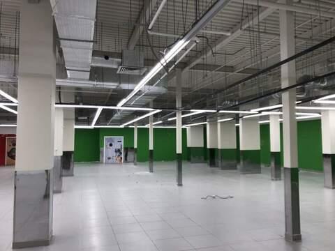 Аренда торгового помещения 1850 м2 - Фото 2