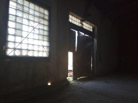 Сдам производственное помещение 200 кв.м, м. Проспект Ветеранов - Фото 2