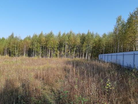 Большое Петровское д, участок 15 соток, знп для ИЖС, свет подведен. - Фото 3