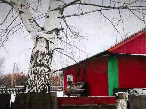 Продам дом с участком 6 соток Перекоп, Ярославль - Фото 1