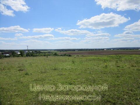 Участок, Дмитровское ш, 40 км от МКАД, Минеево. Дмитровское шоссе 41 . - Фото 2