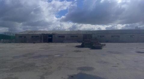 Продажа производственно-складских зданий 4770 м2, п. Михнево, . - Фото 1
