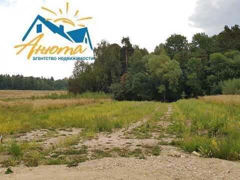 Продается земельный участок 10,5 соток в окружении леса в 3 км от Ново - Фото 4