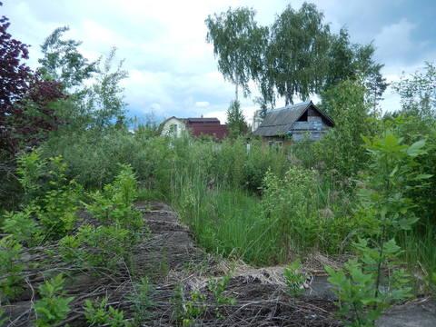 Земельный участок в СНТ на землях населённых пунктов - Фото 2