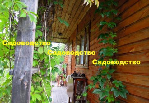 Дача вокруг леса с прудом для купания р-н Красная Пресня - Фото 5