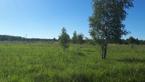 Участок 11.6 соток в д.Скрипово, рядом лес, водоем и п.Заокский - Фото 5