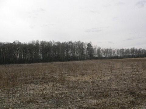 Продается участок 42 сотки в кп рядом с Боровском, все коммуникации. - Фото 4
