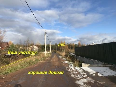 Продам участок Всеволожский р-он массив Блудное СНТ Придорожное - Фото 5