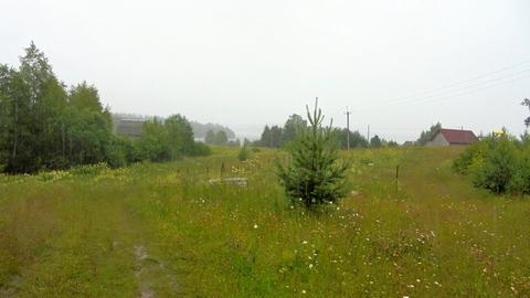 Новгородская область, Любытинский район, д.Домовичи, 10 сот. ЛПХ - Фото 1