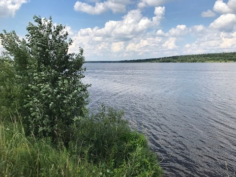 Участок 20 Га на 1 береговой линии р.Волга, д. Семеновское - Фото 3