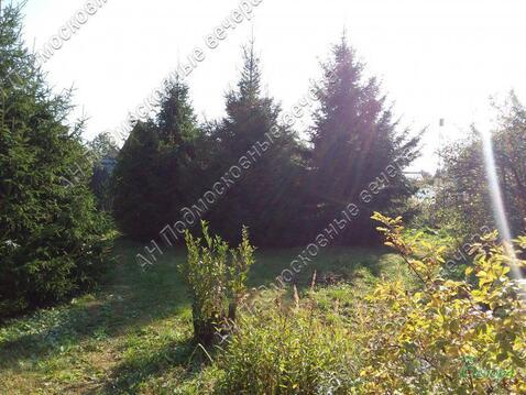 Волоколамское ш. 45 км от МКАД, Ильино, Дача 60 кв. м - Фото 4