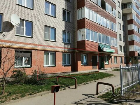 Помещение свободного назначения в Псковская область, Псков ул. . - Фото 1