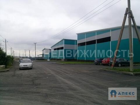 Аренда помещения пл. 900 м2 под склад, производство, , офис и склад . - Фото 3