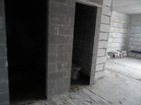 1-комнатная квартира Солнечногорский р-н, д.Голубое, Мелодия леса, д.4 - Фото 3