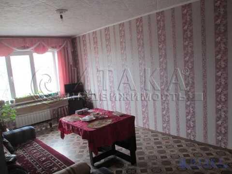 Продажа квартиры, Плодовое, Приозерский район, Центральная ул - Фото 5