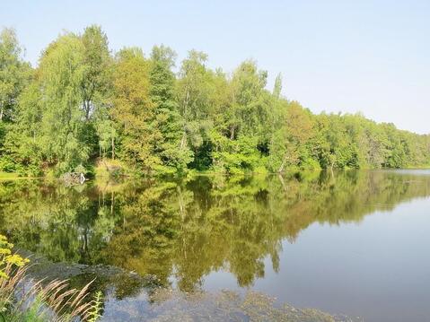 19 сот в лесу, 2,375 млн руб, Калужское шоссе - Фото 2
