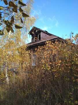 Участок в д. Устьяново - Фото 3