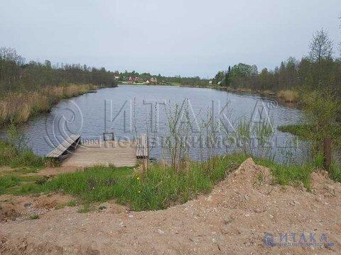 Продажа участка, Белая, Батецкий район - Фото 5