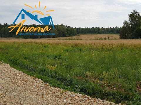 Продается земельный участок 10,5 соток в окружении леса в 3 км от Ново - Фото 3