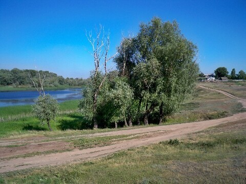 Продам участок 10 соток под ИЖС в Шумейке - Фото 1
