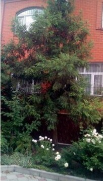 Роскошный дом 423кв.м, и участком 1024 кв.м. в г.Нальчик - Фото 3