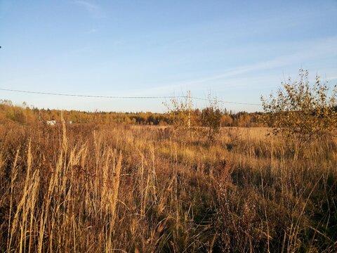 Участок 10 сот. , Щелковское ш, 22 км. от МКАД. - Фото 2
