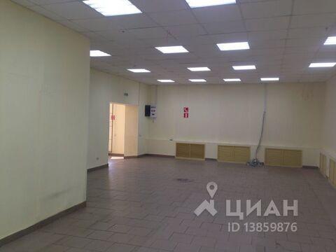 Аренда торгового помещения, Омск, Ул. Академика Павлова - Фото 2